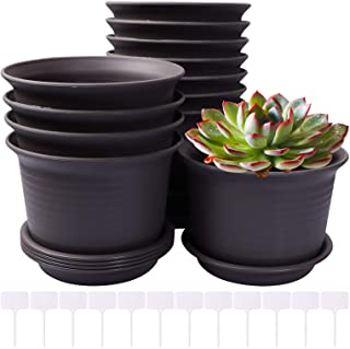 HWASHIN 6 Inch Plastic Flower Pots, 12 Pack Nursery Planter Pot with Drainage Tray and Plant Labels for Flowers Indoor Out...