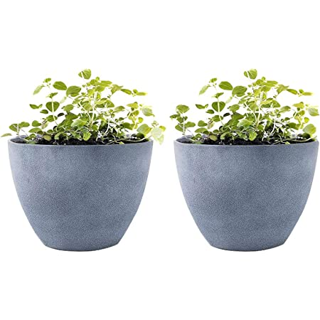 La Jolie Muse Flower Pot Garden Planters Outdoor Indoor Plant Pots Containers With Drain Hole Weathered Grey 11 3 Inch Pack 2 Garden Outdoor