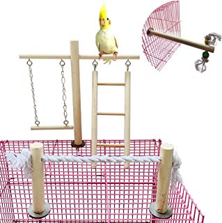 Best bird cage play gym Reviews