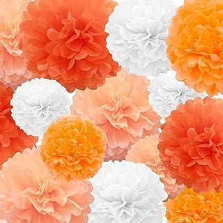 Tissue Paper Pompoms Paper Flower 22 Pcs Orange,Peach,White Paper Flower Ball for Birthday Bachelorette Wedding Baby Showe...
