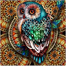Ukerdo Abstract Owl Pictures for Home Wall Arts Living Room Décor DIY Diamond Painting Kits Full Drill