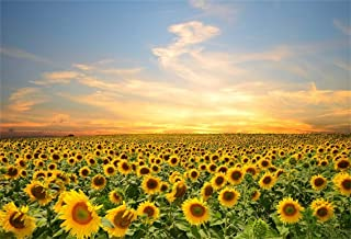 Baocicco 5x3ft Vinyl Sunflowers Field Backdrops for Photography Background Summer Landscape Sunset Blue Sky Outdoor Holiday Party Backdrop Children Adults Portraits Photo Studio