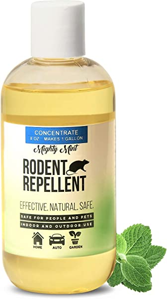 Mighty Mint 8 Oz Peppermint Rodent Repellent Concentrate Makes 1 Gallon Natural Spray For Rats Mice And More Non Toxic