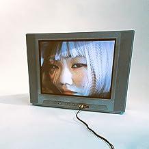 TVの中の女