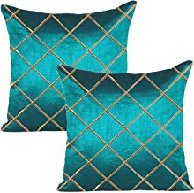 RADANYA Dupion Silk Cushion Cover Set for Sofa and Living Room - 24x24 Inch, Turquoise