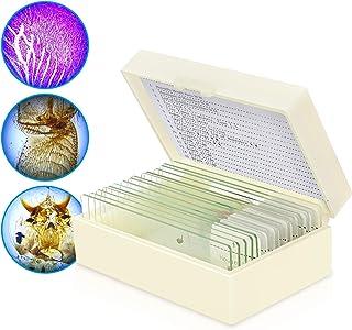 顕微鏡スライド、10%生物科学用スライド、および5枚のブランクアースエッジスライド(収納ケース付き)