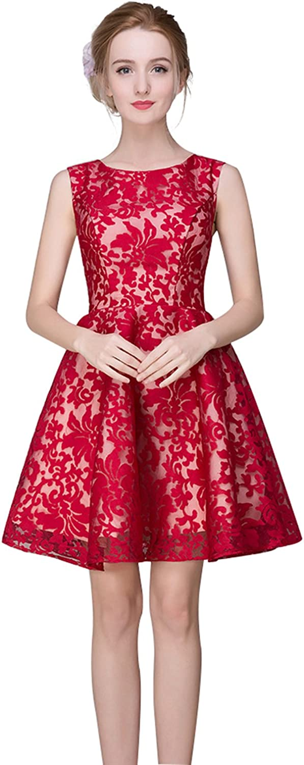 Epinkbridal Women's Embroidery Lace Homecoming Dress Evening Dress Sleeveless Short Party Gowns