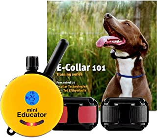 epica dog training collar charger
