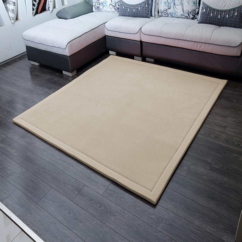Solid color coral velvet mat [modern] Simple Coral velvet padded mat Bedroom Bedside mats-D 80x200cm(31x79inch)