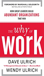 The Why of Work: How Great Leaders Build Abundant Organizations That Win (English Edition)