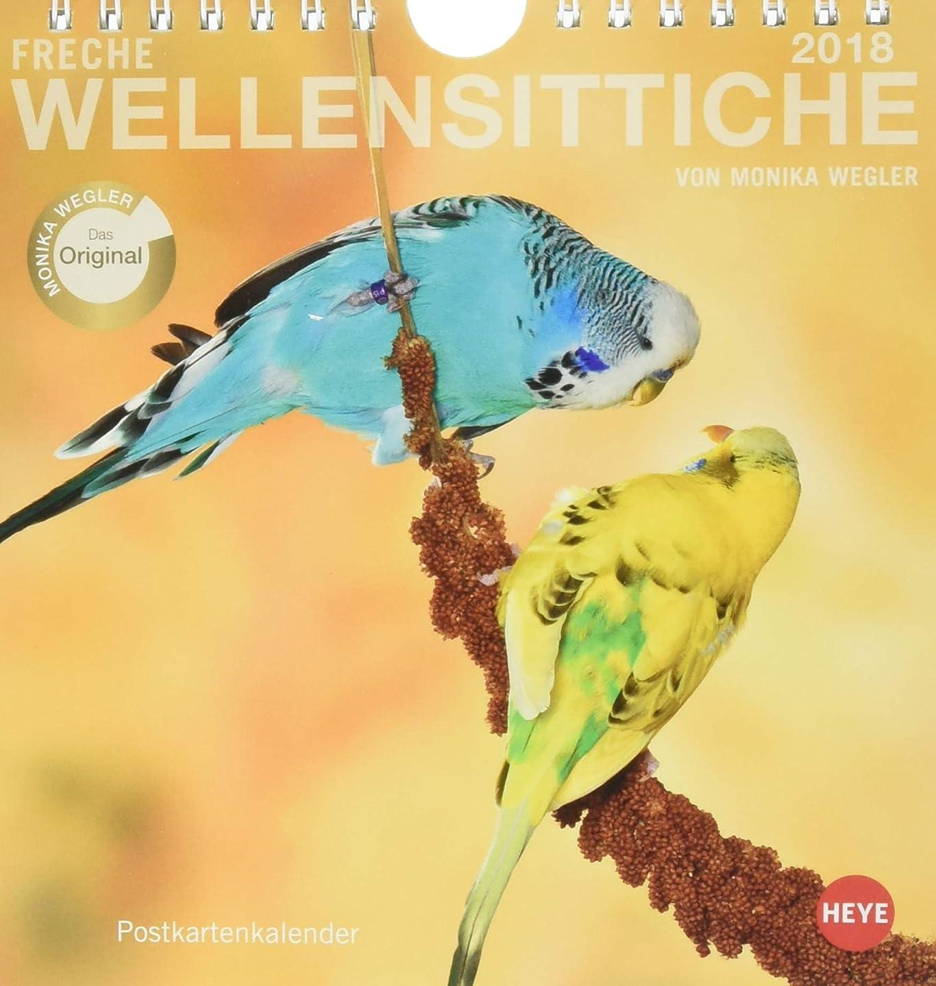 アート居眠りする管理者Freche Wellensittiche 2018. Postkartenkalender