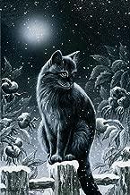 ZHENC 5D DIY Full Square Diamond Painting Needlework Black Cat Moonlight Snow Animals Embroidery Full Drill Craft Decor Cross Stitch Kits