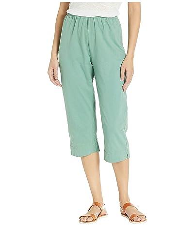 Fresh Produce Jersey Capri Pants (Lagoon Green) Women