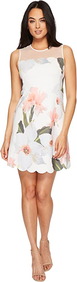 Caprila Chatsworth Bloom Scallop Tunic