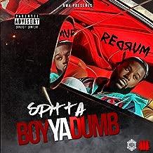 Boy Ya Dumb [Explicit]