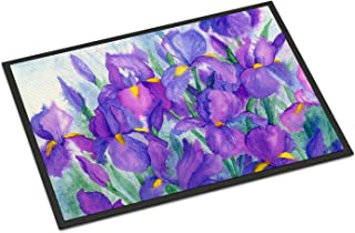 Caroline's Treasures IBD0256JMAT Purple Iris Indoor or Outdoor Mat 24x36, 24H X 36W, Multicolor