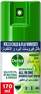 Dettol Morning Dew Antibacterial All in One Disinfectant Spray Mini, for use on Sofa, Car Seats, Kitchen Surfaces etc. (Ki...