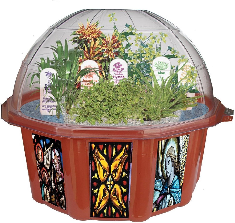 DuneCraft BG0010 Dome TerrariumsBiblical Garden