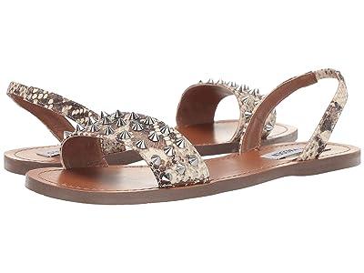 Steve Madden Award Flat Sandal (Snake) Women