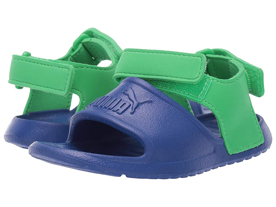 Puma Kids Divecat Injex (Toddler) (Surf the Web/Irish Green) Kid