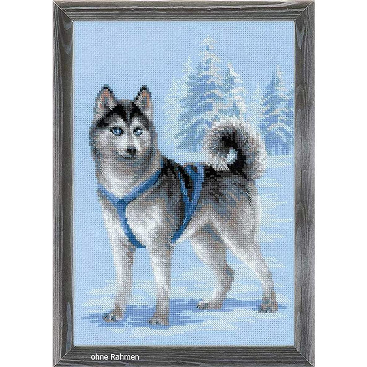 RIOLIS 1626 - Husky - Counted Cross Stitch Kit 10?