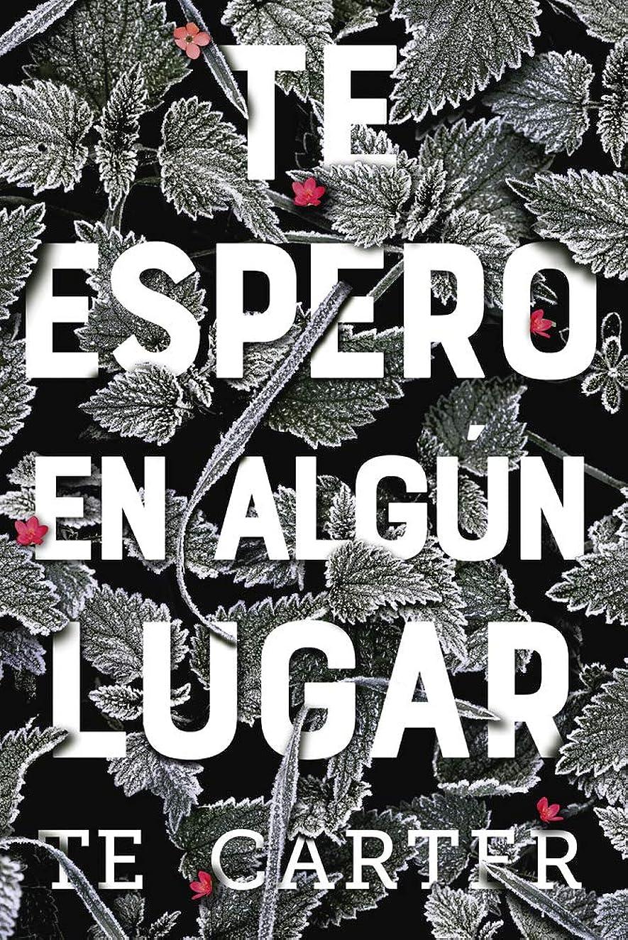 Te espero en algún lugar (Spanish Edition)