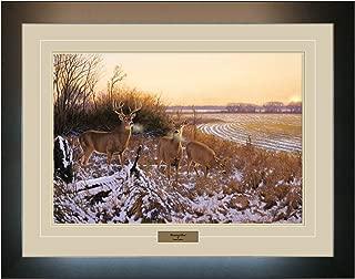 Best hayden lambson framed artwork Reviews