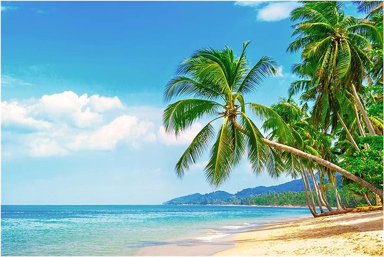Tropical Beach Photography Background Arlington Mall 2021 model Summer Bab Seaside Wedding