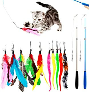 PawPawU Interactive Cat Toys, 12pcs Cat Feather Teaser Toy with 2 Retractable Wand & 10 Bird Feather and Worm Attachments,...