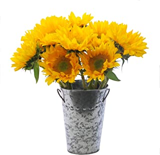 Stargazer Barn Beautiful Fresh Sunflower Bouquet With Vase