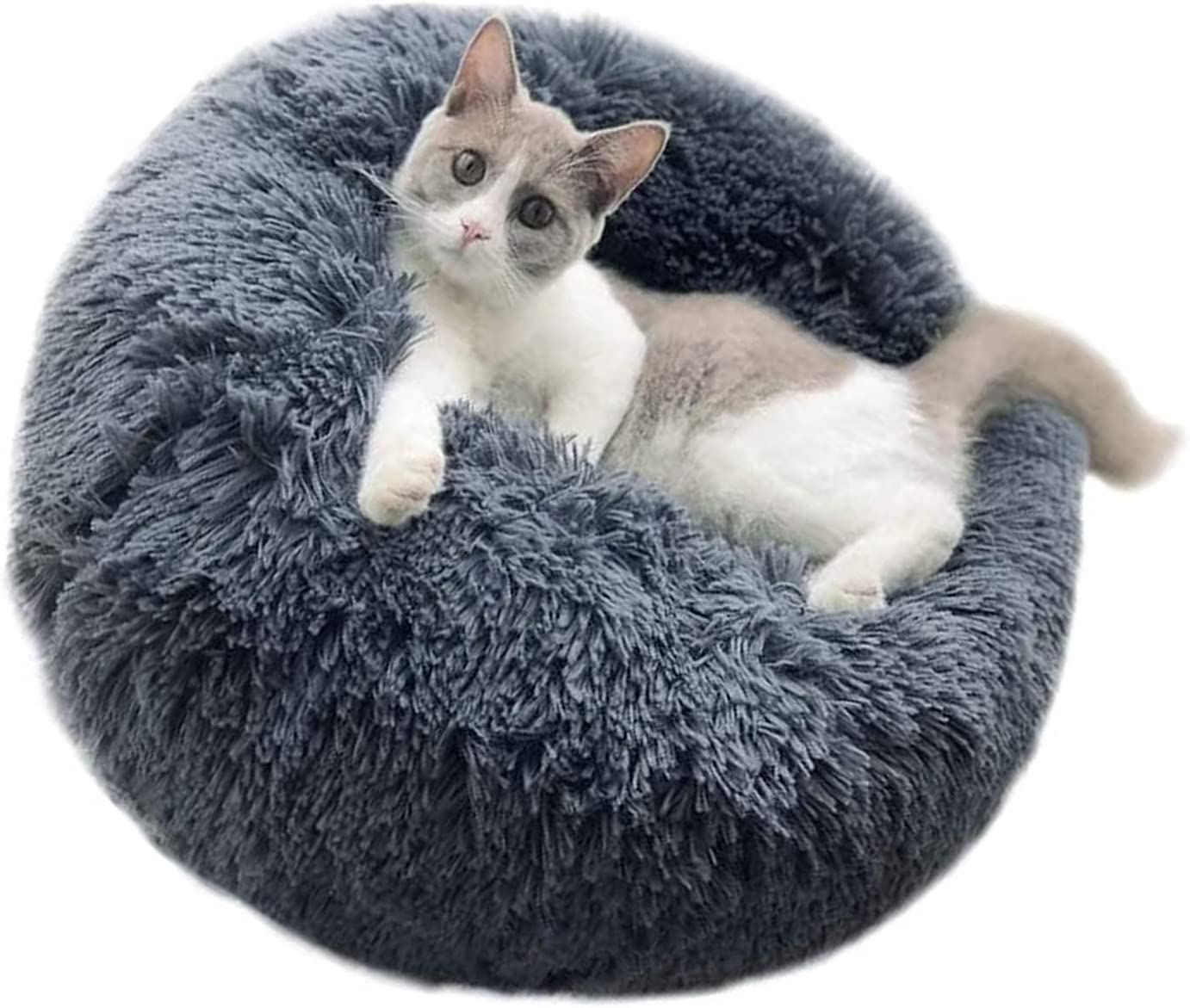 ZINGYUE Calming Cat Bed Safety and trust Dog Donut Pet Plush Cuddl Boston Mall Cushion Fluffy