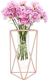 GLAITC Vase à Fleurs avec Cadre en Métal,Or Rose/Or Cadre métal et Tube essai en Verre Vases de jardinière de Fleurs Vase ...
