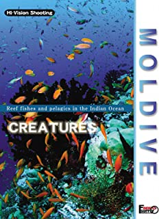 Moldive The Creatures