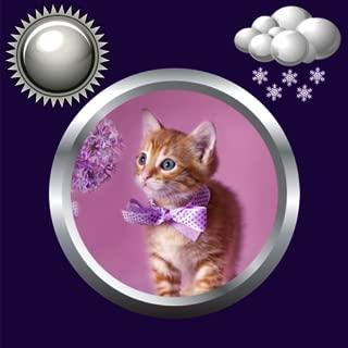 Kitty Clock & Weather Widget