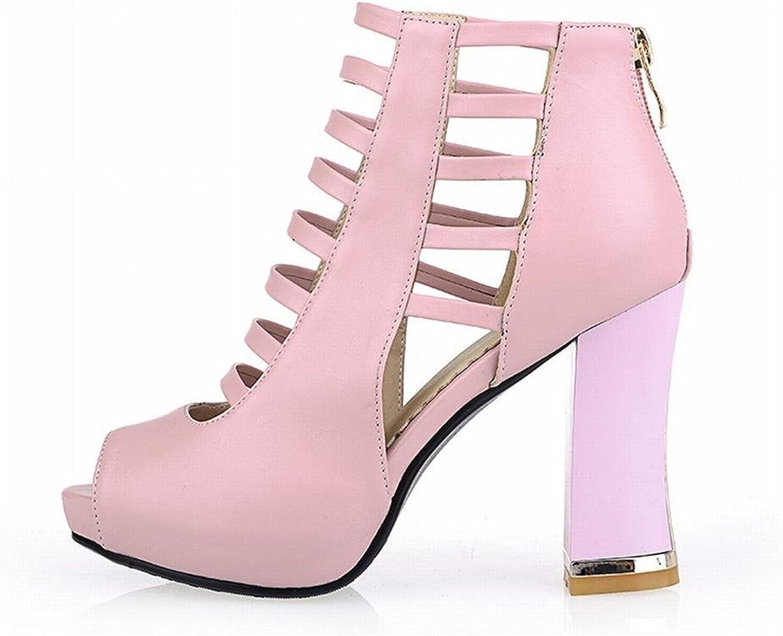 Tirahse Sweet Fashion Women's Peep-Toe Zipper Pierced Platform High Chunky Heel Ankle Summer Boots