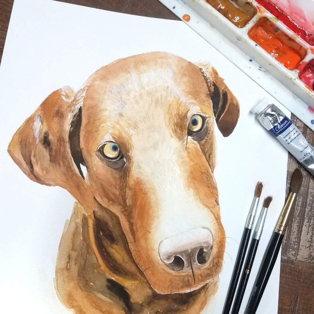 Amazon.com Pet Portrait, Pet Portraits by Laura, Custom Dog ...