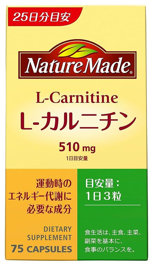 ローラーアンカーすり減る大塚製薬 ネイチャーメイド L-カルニチン 75粒