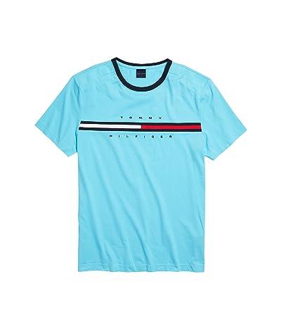 Tommy Hilfiger Adaptive Signature Stripe Tommy T-Shirt (Bachelor Button) Men
