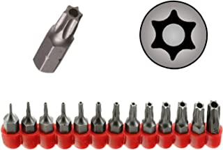 Ram-Pro 13Pc Torx Star 6 Point, Security Tamper Proof, Driver Bit Set - T4, 5,6,7,8,9,10,15,20,25,27,30,40 – Multifunction Damage/Shear Resistant Hollow Torque Kit