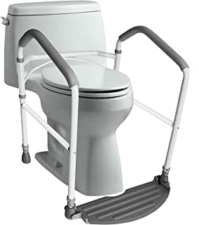 swing up grab bar with toilet paper holder