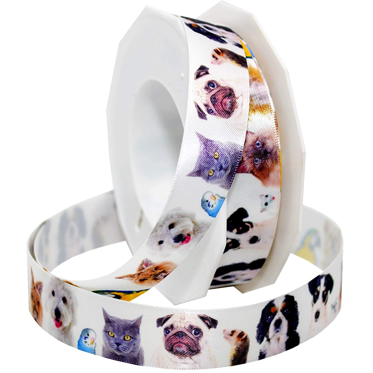 Morex Ribbon 5682 Precious Pets - All Animals Ribbon, 7/8 inch by 20 Yards, White