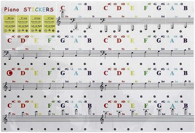 iGadgitz Home U7023 - Pegatinas para el Piano Pegatinas Notas Musicales Adhesivas Piano Stickers - Para Teclados Electrónico o Pianos de 37/49/61/88 - ...