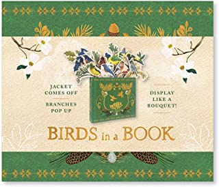 Birds in a Book  (UpLifting Editions): Jacket Comes Off. Branches Pop Up. Display Like a Bouquet!