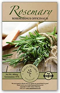 Gaea's Blessing Seeds - Rosemary Seeds 400+ Non-GMO Seeds Heirloom Herb 97% Germination Rate Net Wt. 800mg