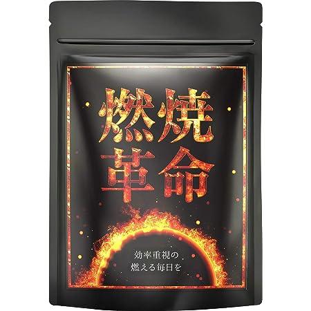 [公式]燃焼革命 カプサイシン ブラックジンジャー L-カルニチン 厳選11種 30日分(国内生産)