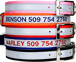 GoTags Embroidered Reflective Dog Collars with Metal Buckle, Personalized Dog Collar Custom Embroidered with Pet Name and Phone Number, Sizes for Puppy and Dogs Extra Small, to Medium and Large