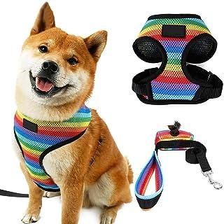 Suchergebnis Auf Für Regenbogen Geschirre Halsbänder Leinen Hunde Haustier