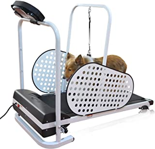dog treadmill non-motorized