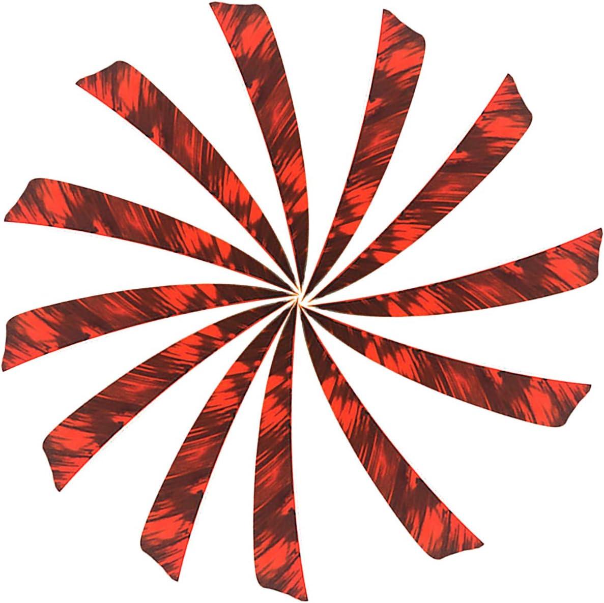 Jagdpfeile f/ür Bogen und Traditionellen Bogen 31 Zoll Bogenpfeile Carbon Pfeile f/ür Bogenschie/ßen mit 20pcs 4 Naturfeder 6 x Pfeile Spine 500 f/ür Compound Recurvebogen
