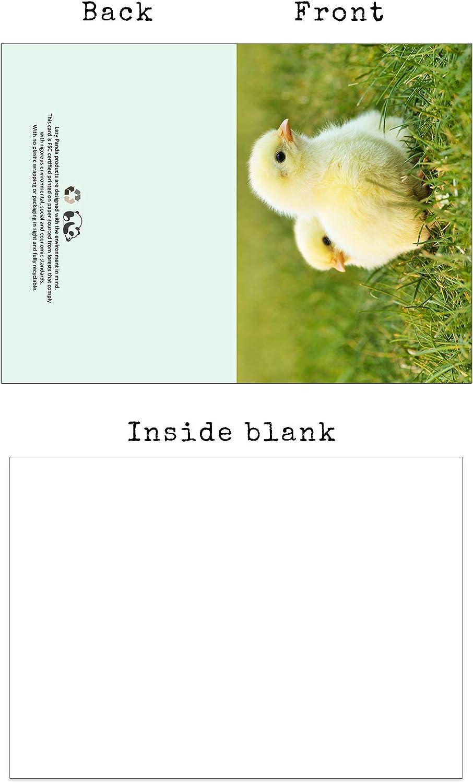 gaixample.org Blank Greeting Cards UK Farm UK Wildlife & Sea Life ...